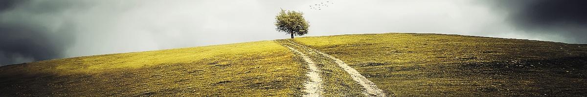 chemin_cycle
